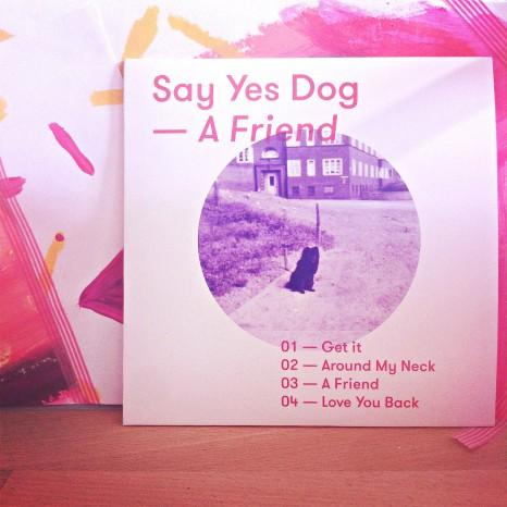 Kurz glücklich gemacht und wieder heim gedüst: SAY YES DOG im Konzert