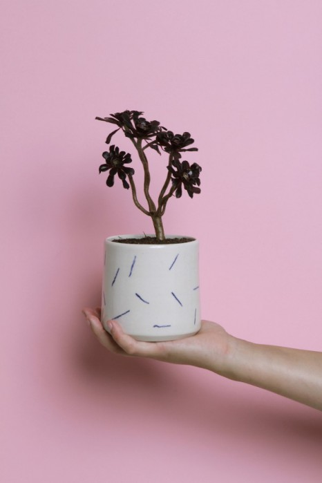 Mehr Keramik und Kakti-Liebe: Weak End Club